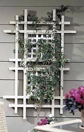 One Terrific Trellis Woodworking Plan