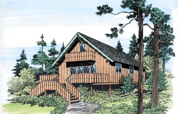 Contemporary Retro House Plan 10054 Elevation
