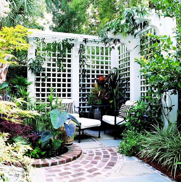 Project Plan 503483 Old World Privacy Trellis