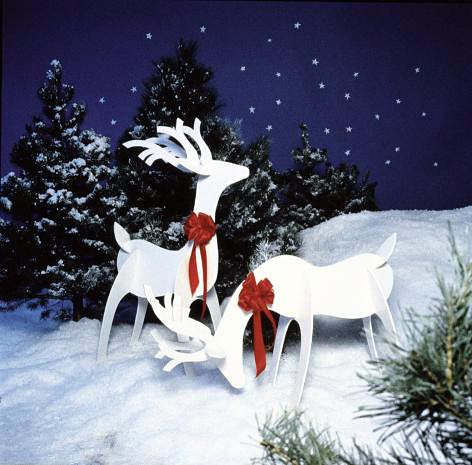 Graceful Reindeer - Project Plan 504882